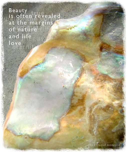 Photo of abalone shell with quote by Daniel Ambrose. Beauty is often revealed at the margins of nature and life love.