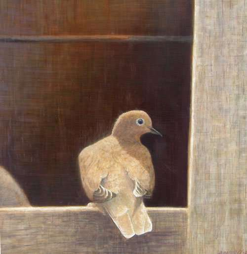The Other Dove, egg tempera on panel. Daniel Ambrose