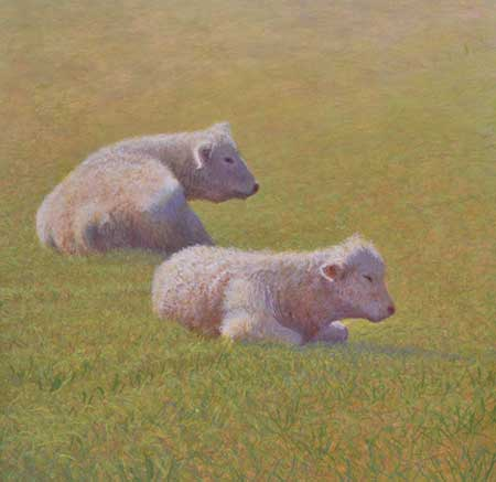 Companionship, egg tempera painting of two Charolais cows by Daniel Ambrose