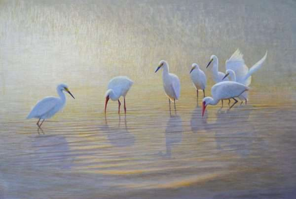 Seven for a Secret, egg tempera painting of birds in water by Daniel Ambrose