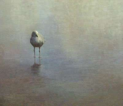 egg tempera painting of a seagull